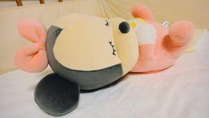 SONY DSC-TX5 タカラトミー いっしょにねんね ベビーミニー(2011.06.28)