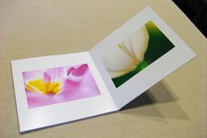 Canon IXY Digital 60 フォトブック リフォット(2009.03.23)
