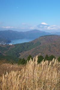 Canon EOS 5D MarkII & EF17-40mm F4L USM 大観山(2009.11.07)