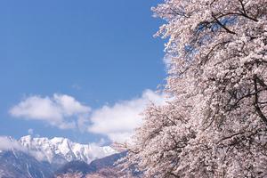Canon EOS20D & SIGMA 18-50mm F2.8 EX DC 北杜市武川町真原地区
