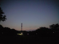 081013 小金井公園