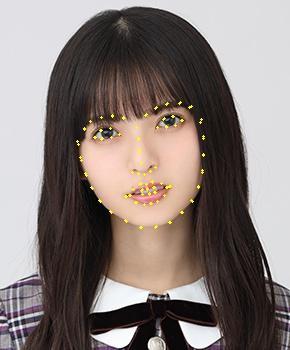 顔器官の検出