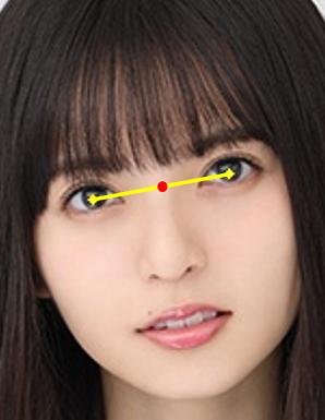 顔の基準点