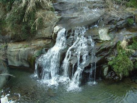 山切川④2007.3.20