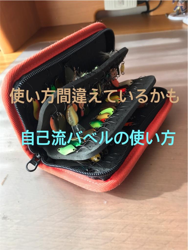 f:id:duuki0721:20170110133607j:image