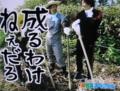 人気 ドラマ 日本(dvdsjp.com)