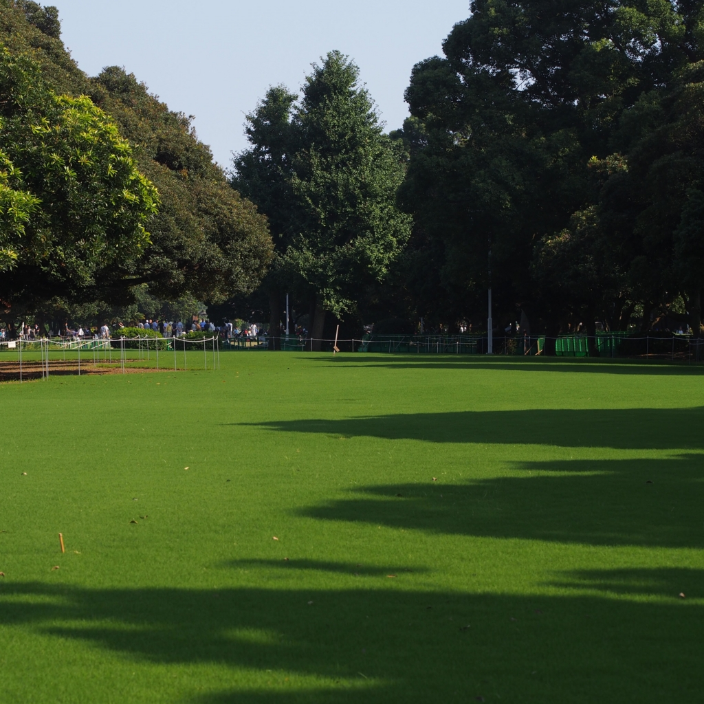 山下公園の芝生