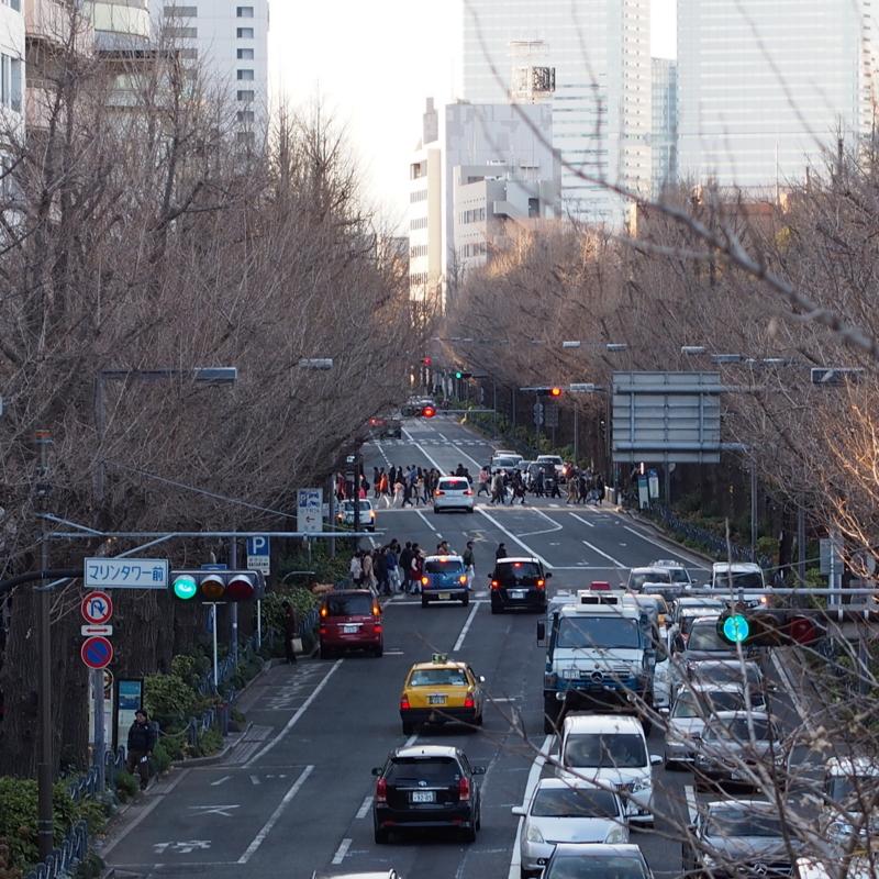 山下公園通り。