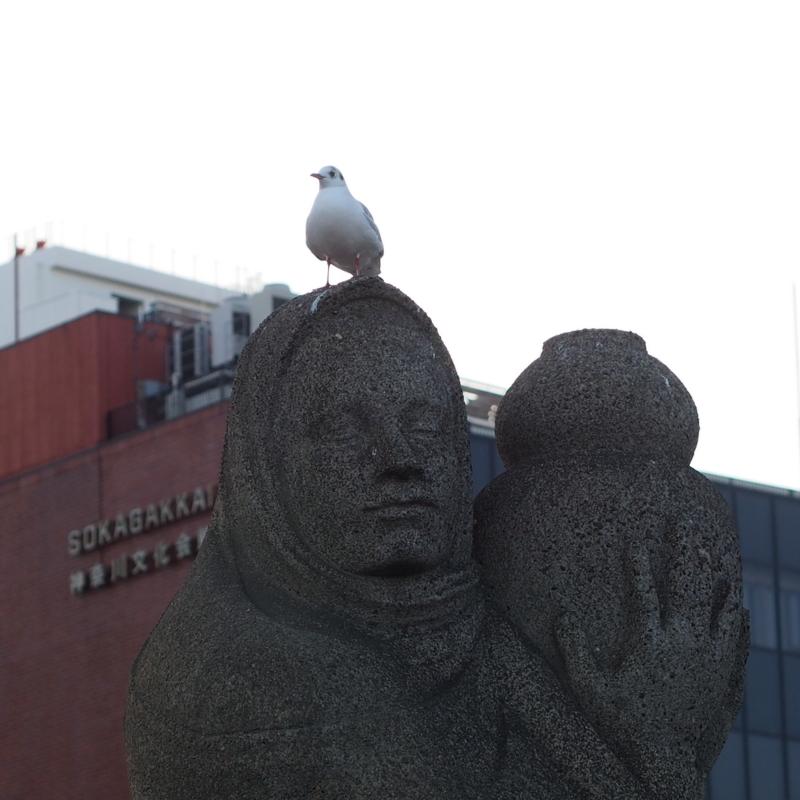 噴水の像の頭の上のカモメ