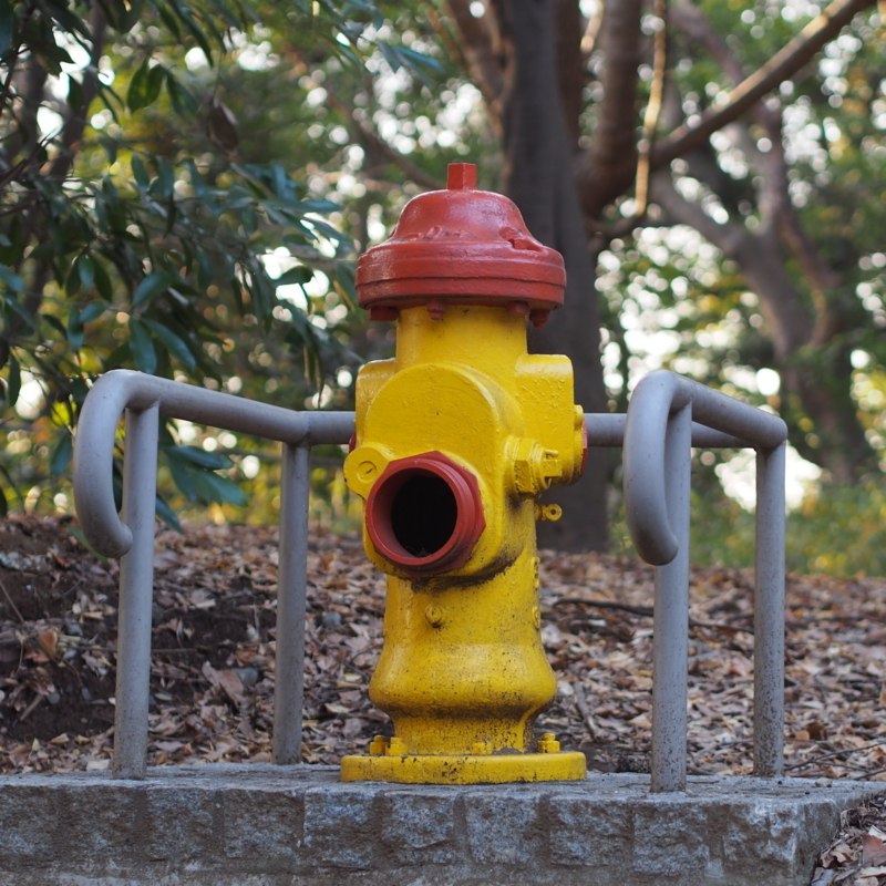 ドライ・バレル消火栓