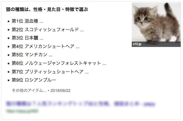 猫ランキング