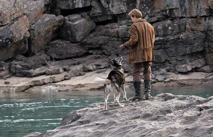 ネタバレ感想【トーゴー】犬嫌いが見た結果…『本当に実話なのか考察してみた』