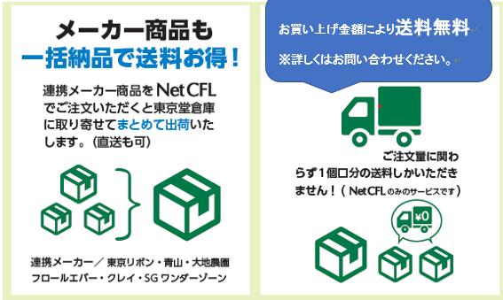 f:id:e-tokyodo:20200307170907p:plain