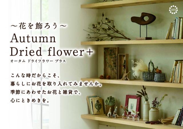 f:id:e-tokyodo:20210927152251j:plain