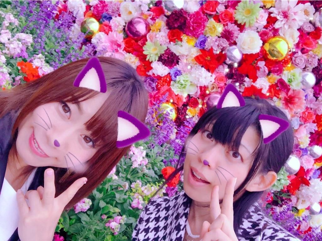 f:id:e-tomatsu:20181129104545j:image