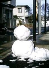 八王子産雪だるま