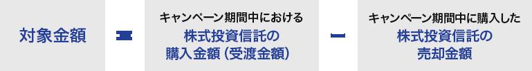 f:id:e510r4:20200217152646p:plain