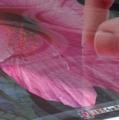 「新しいiPad」(新型第3世代/iPad3/iPad2012)撮影写真拡大(ポスター花)
