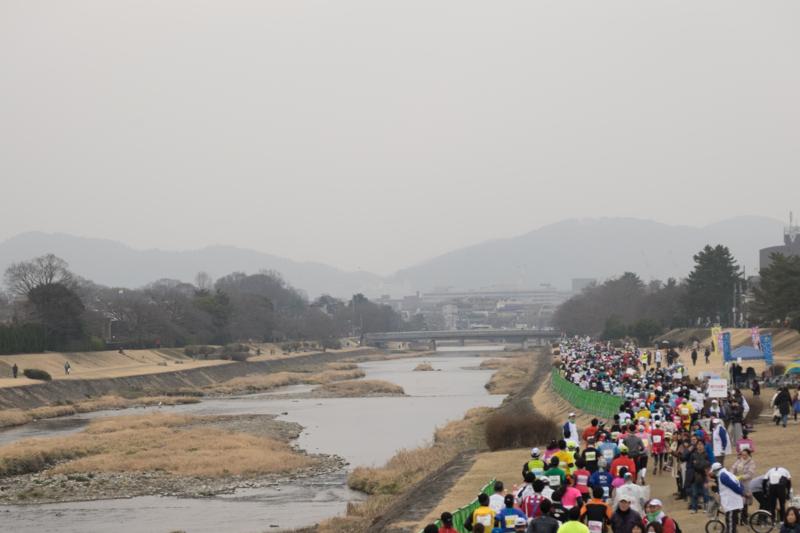 京都新聞写真コンテスト 二月鴨川