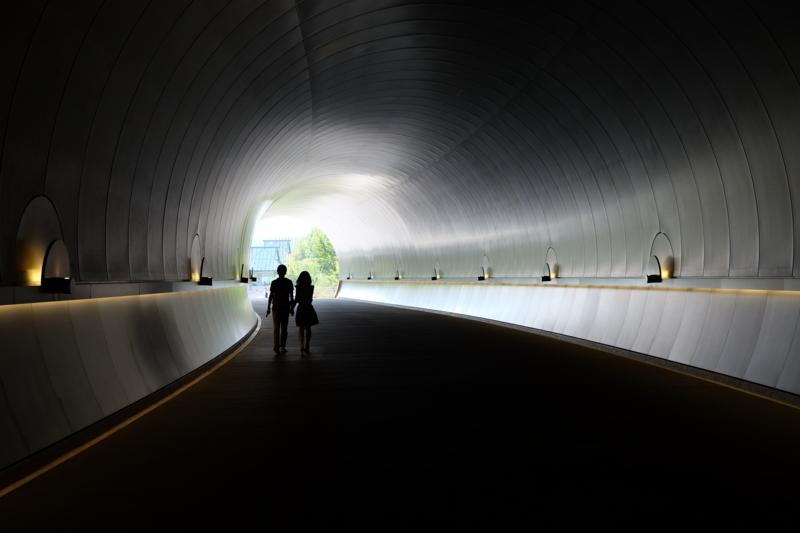 京都新聞写真コンテスト もうすぐ