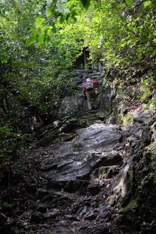 京都新聞写真コンテスト 岩を登る