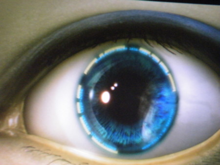 f:id:ebapon:20091002214639j:image