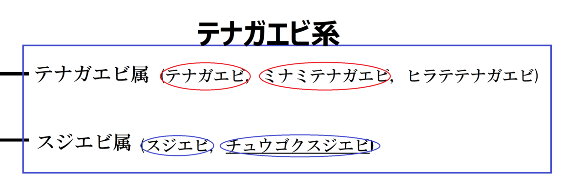 f:id:ebina-1:20210513165659p:plain