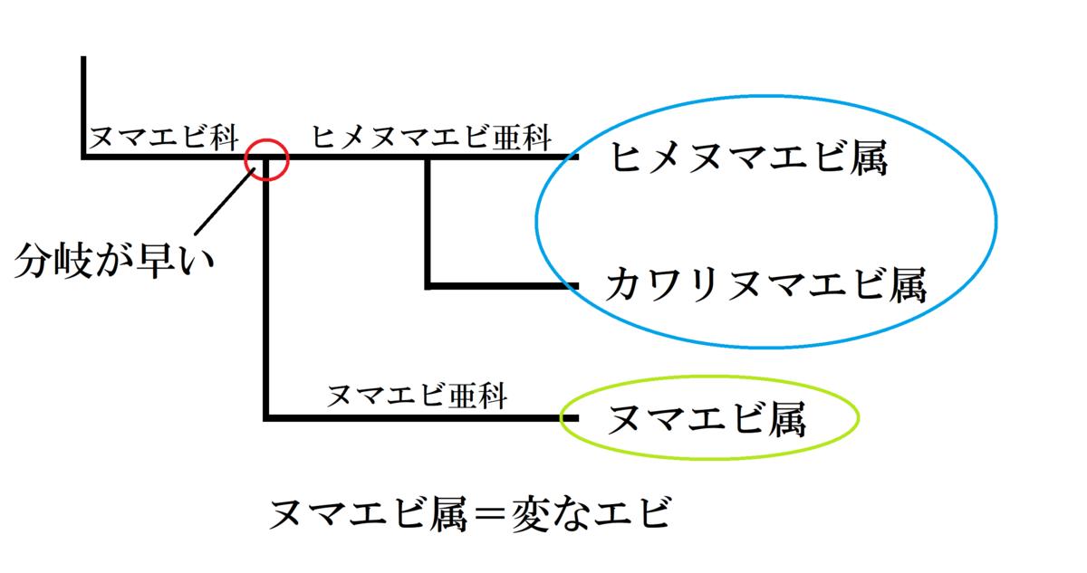 f:id:ebina-1:20210514115008p:plain