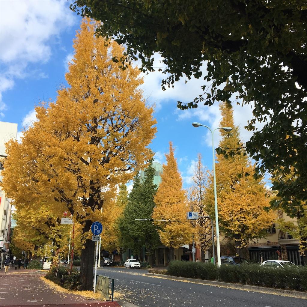 f:id:echigohimechan:20161212100850j:image