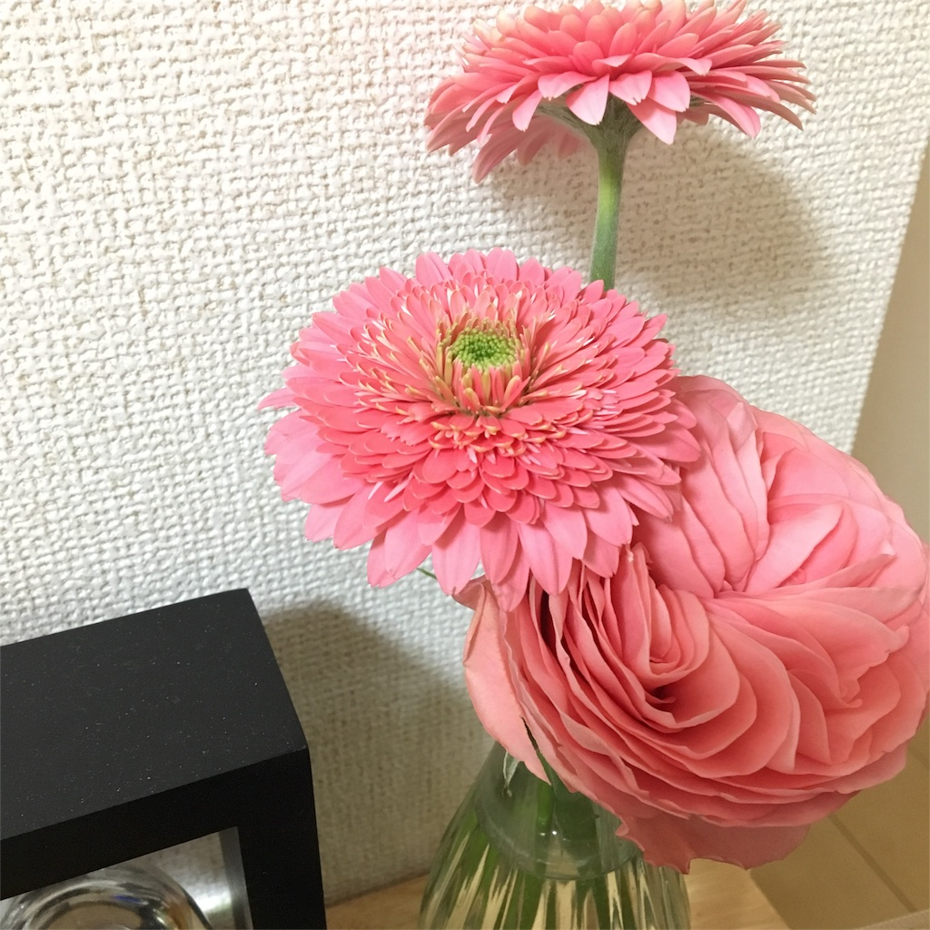 f:id:echigohimechan:20170201030040j:image