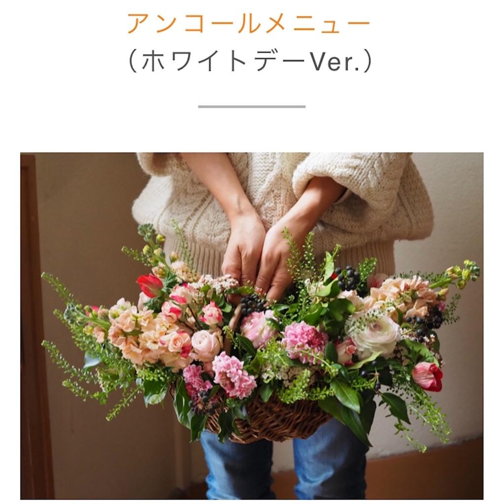 f:id:echigohimechan:20180221021444j:image