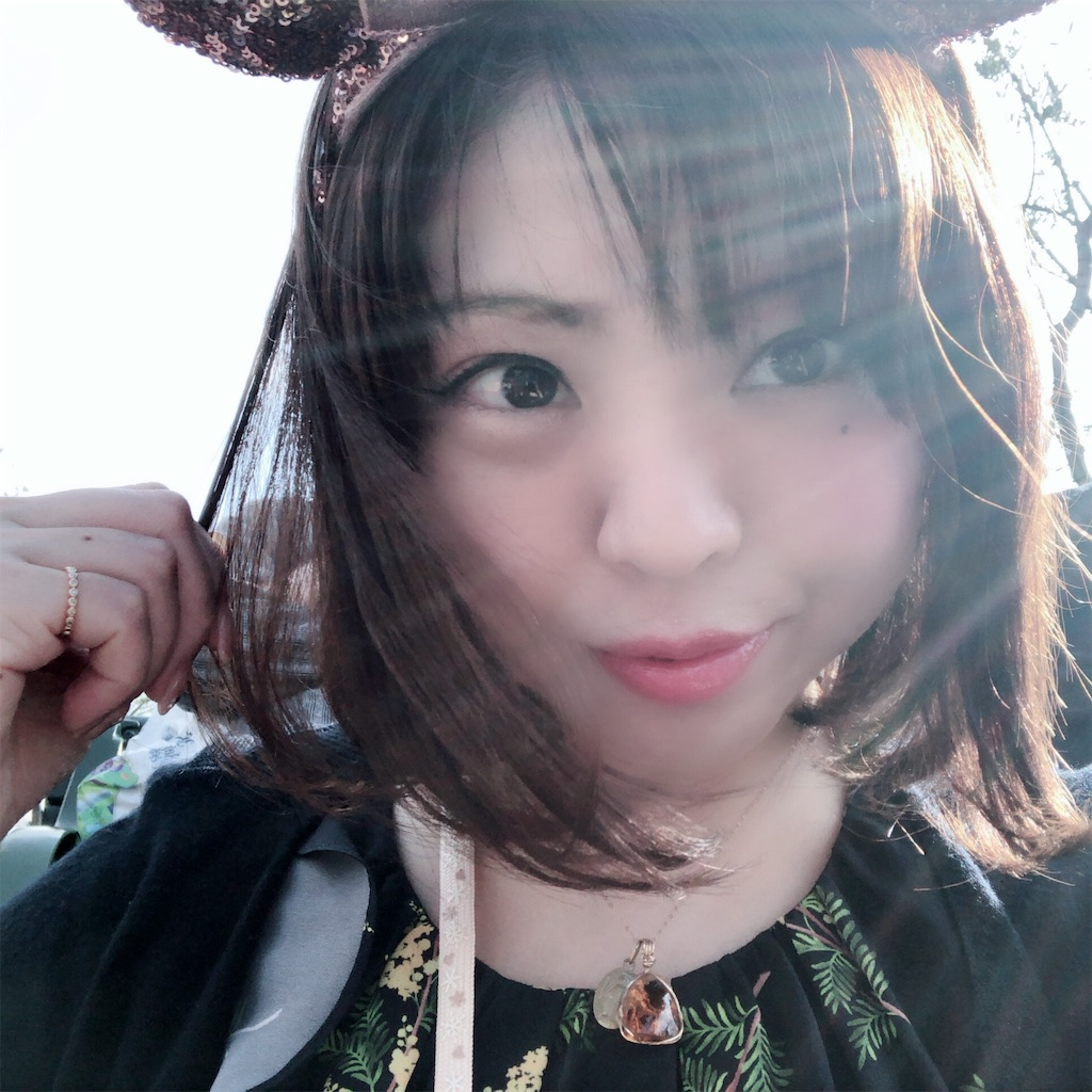 f:id:echigohimechan:20181111213441j:image