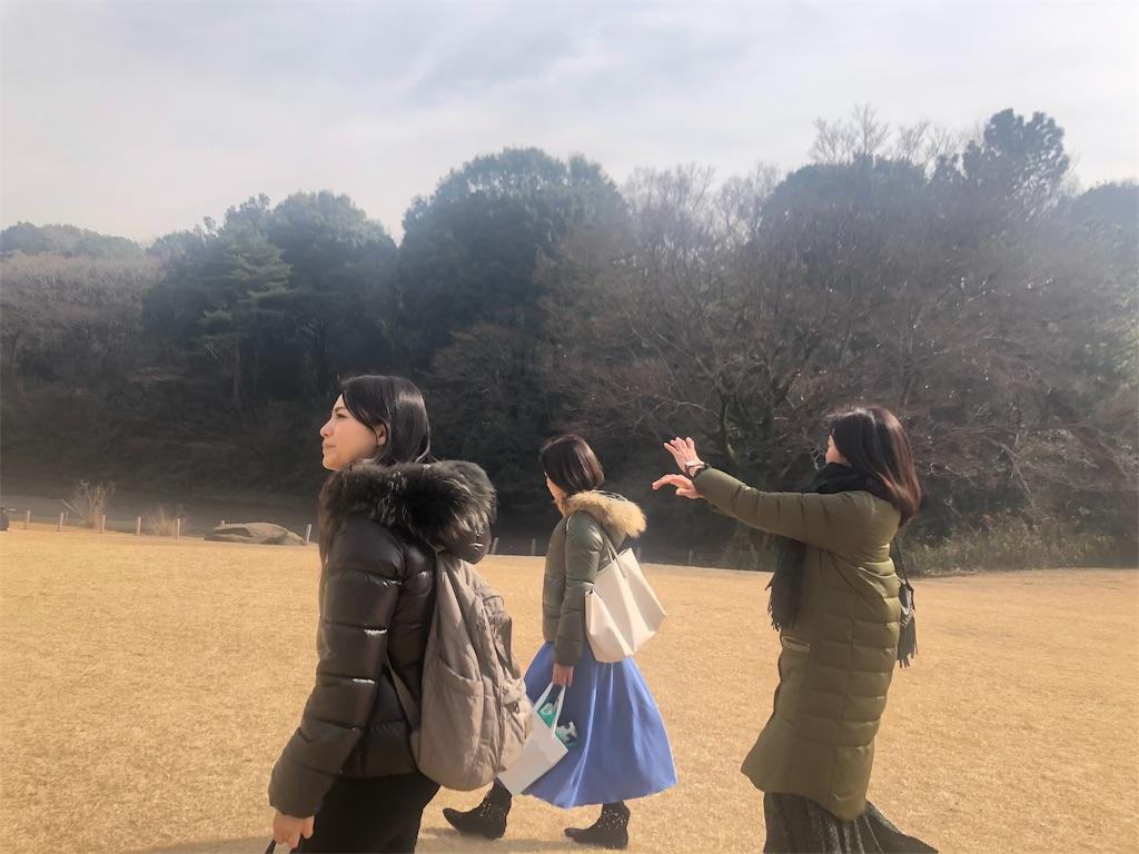 f:id:echigohimechan:20190210183228j:image