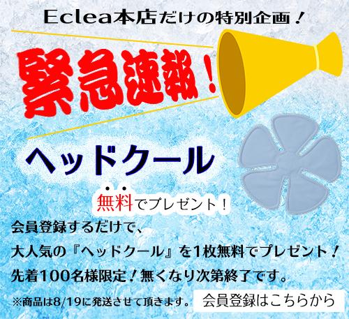 f:id:eclea:20190809182240j:plain