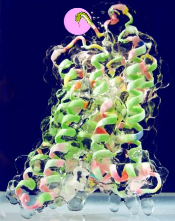 f:id:ecochem:20130101164705p:image