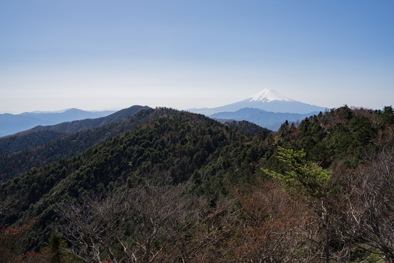 小金沢山2017/11