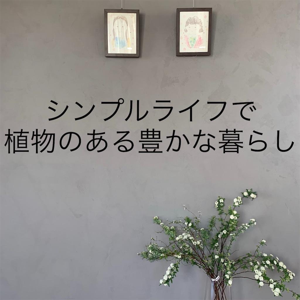 f:id:econaseikatsu:20190118083822j:image
