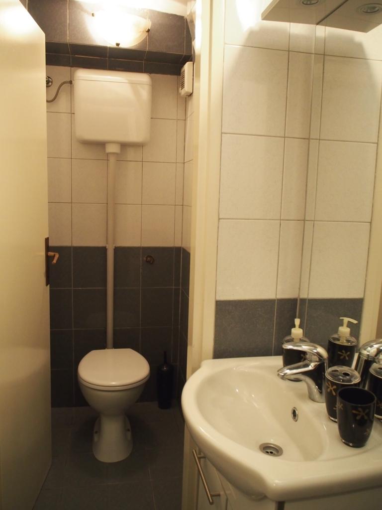トイレと洗面台の様子