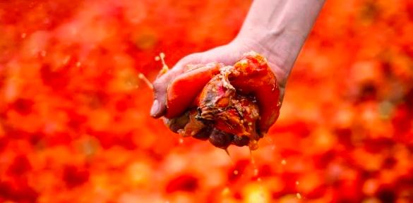 トマトは潰して投げましょうイメージ画像