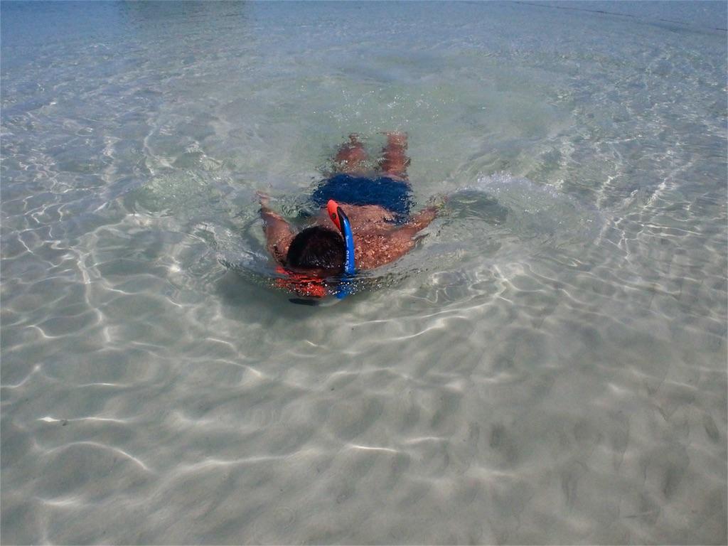 真っ白な砂浜と遠浅の海