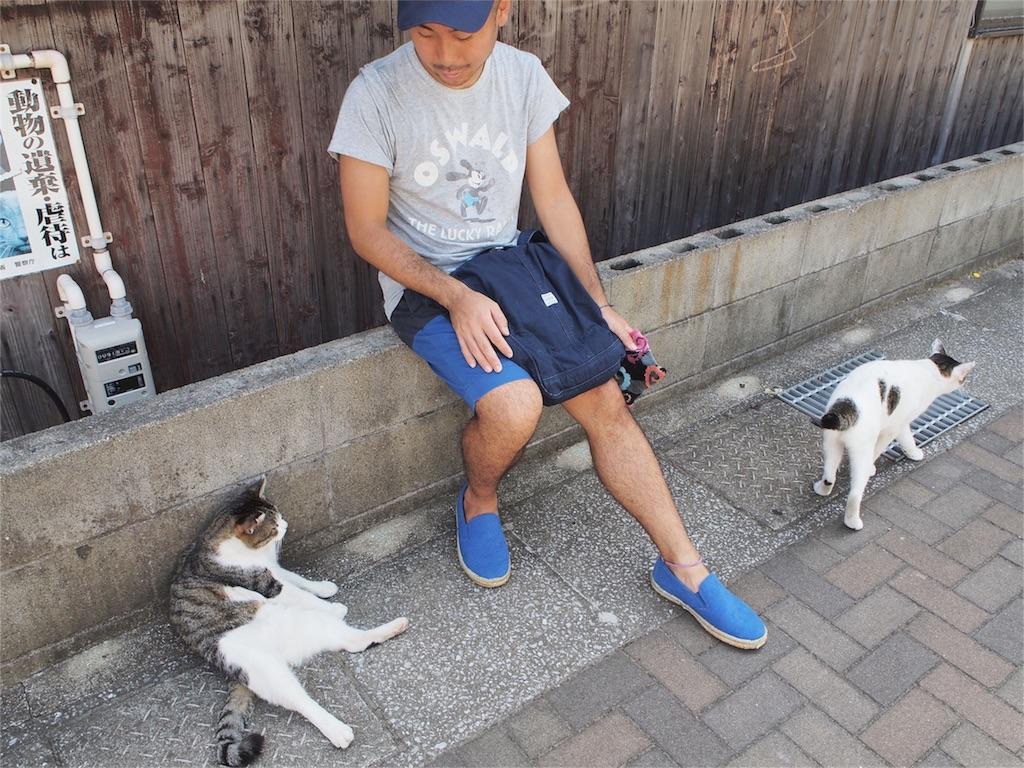 藍島でかわいい猫とのほのぼのタイム♡