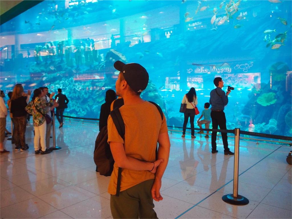 どどーんと現れるドバイ水族館の巨大水槽