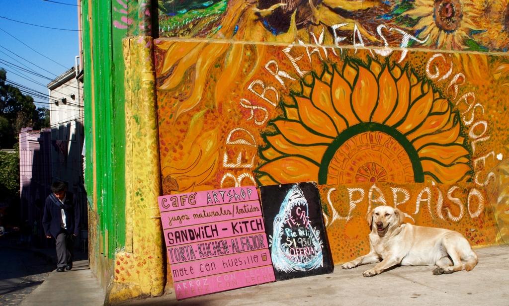 世界遺産のお洒落街バルパライソと犬