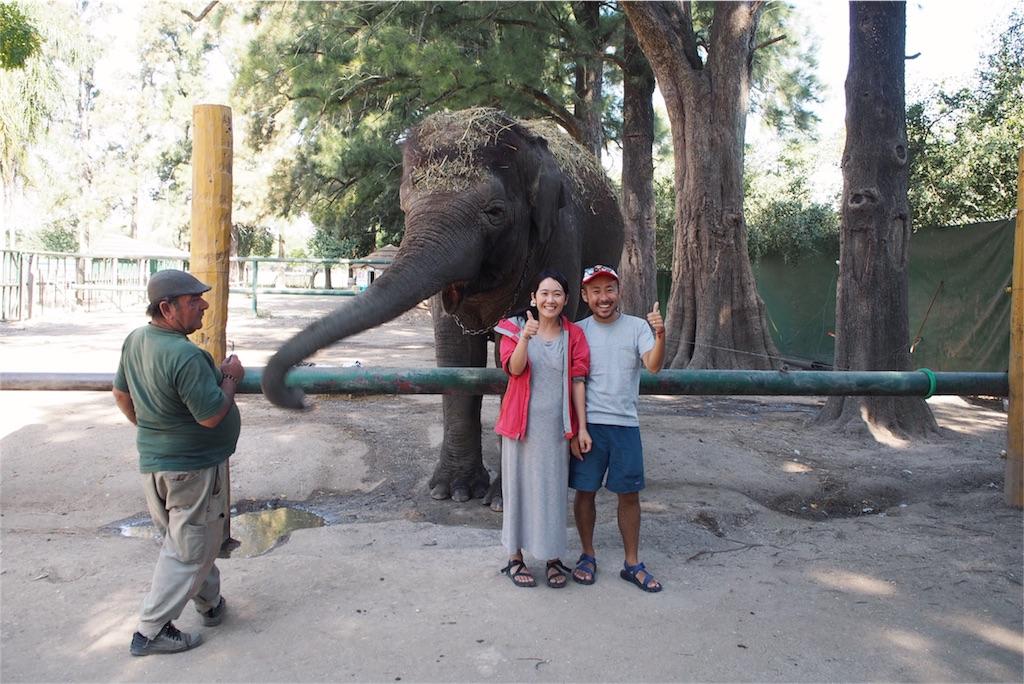 象にエサやり体験もできました