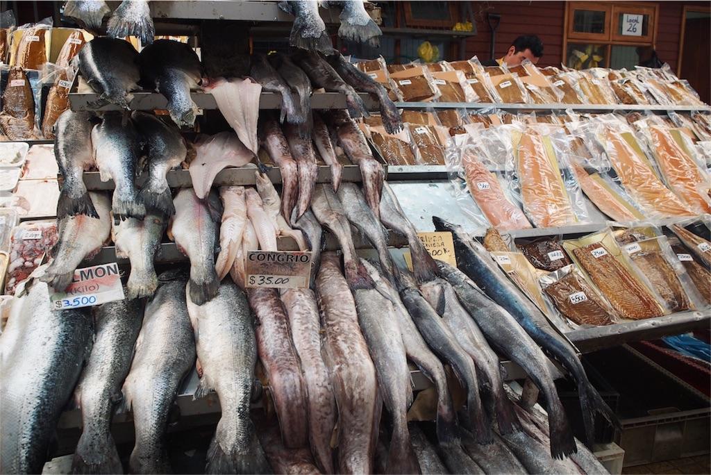 魚市場には魚がずらり!!