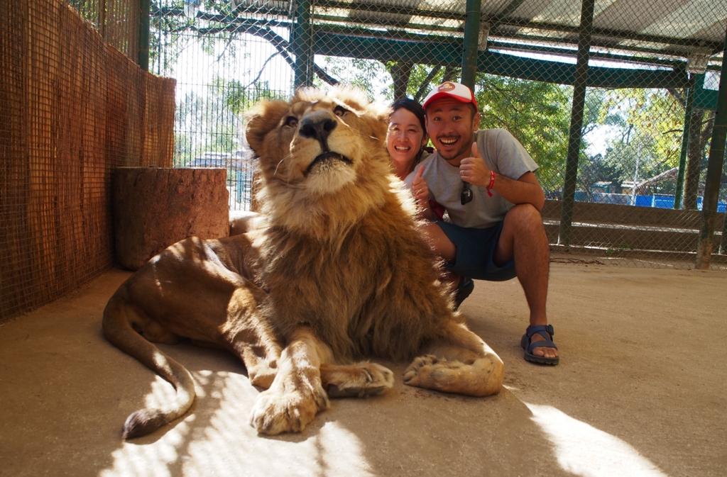 世界で一番危険な動物園 ブエノスアイレス