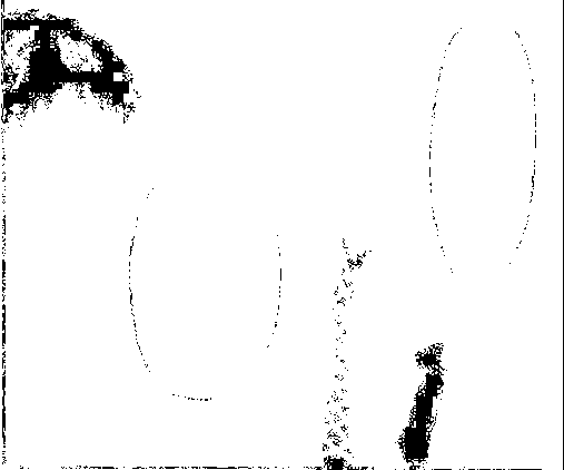 f:id:edonopoh:20170811000006p:plain