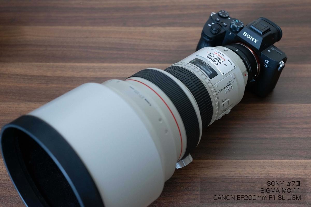 【1番ボケるレンズ!?】CANON EF200mm F1.8L USM