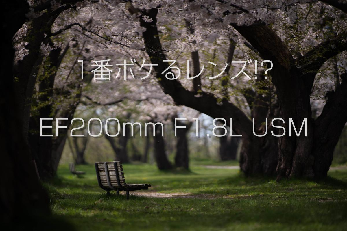 f:id:eeeeesan:20210505101600j:plain