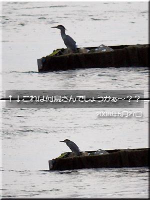 f:id:eeko2525:20080528020307j:image